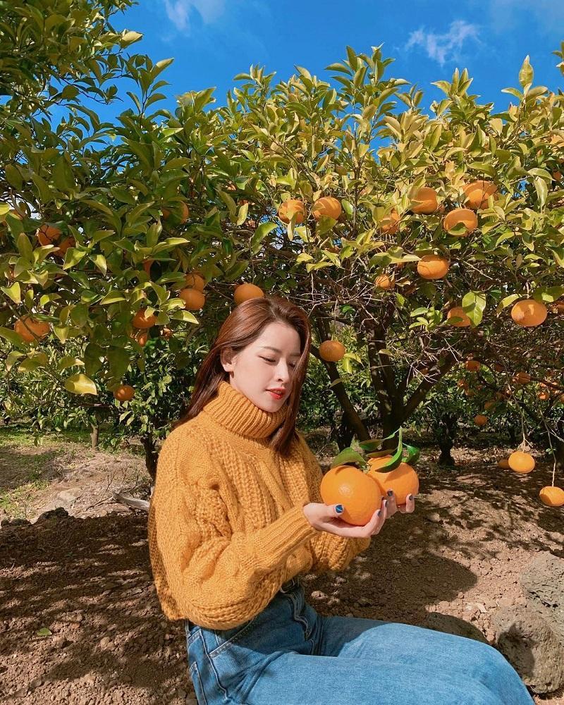 Mỹ phẩm Hàn Quốc luôn được chiết xuất từ thiên nhiên