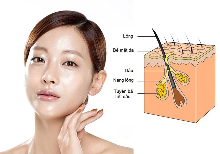 Biểu hiện của da dầu