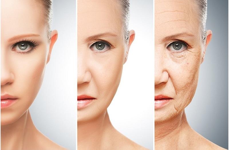 Trà xanh còn có công dụng giảm thiểu các dấu hiệu của lão hóa