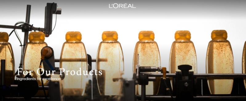 Cam kết của L'Oréal đối với sản phẩm