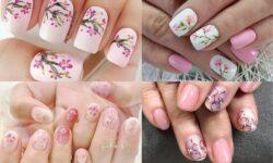 4 mẫu nail hoa đẹp trên nền hồng giúp móng xinh lung linh