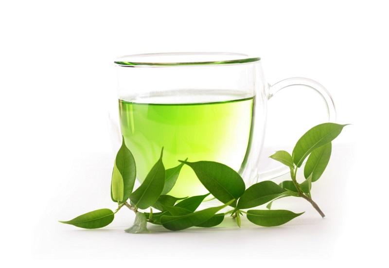 Cách trị mụn bằng lá trà